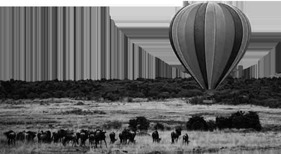 globo viajes tanzania