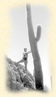 cactus VIAJE ARGENTINA, CHILE, BOLIVIA y BRASIL AVENTURA