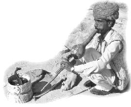 serpiente VIAJES INDIA