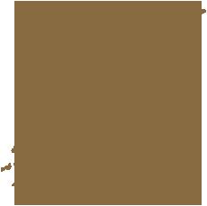 mapa VIAJE JAPON