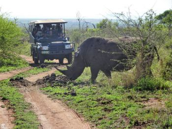 Safari en 4x4, Hlane NP. Swaziland.: Sudáfrica, Swaziland