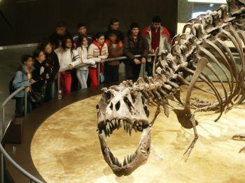 Aventura en Asturias Familia: España