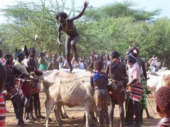 Ukuli Bula, tribu Hamer: Etiopía, Eritrea