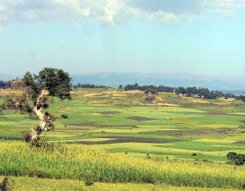 De camino a Bahar Dar: Etiopía