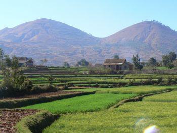 Betafo: Madagascar