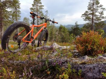 fatbike colours: Finlandia