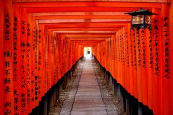Fushimi-Inari. Kioto : Japón