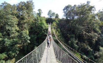 Camino del hotel de Balthali: Nepal