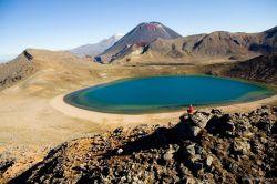 Nueva Zelanda y Polinesia: Nueva Zelanda