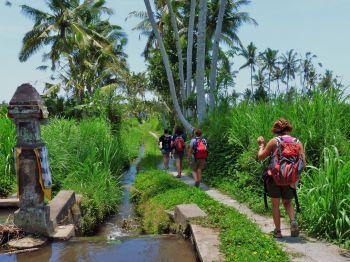 Trek por Bali: Indonesia