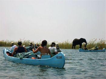 Descenso en canoa Rio Zambeze. Zambia.: Zambia, Malawi, Mozambique