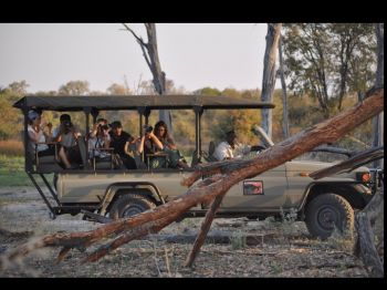 Safari en Moremi, Botswana.: Botswana, Cataratas Victoria