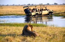 Safari en  la reserva de Moremi en 4x4. : Botswana, Zimbabwe, Cataratas Victoria
