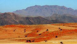 Desierto de Namib, uno de los más antiguos del mundo. Namibia.: Namibia, Botswana, Cataratas Victoria, Sudáfrica