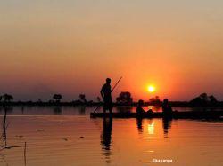 Puesta de sol en el Delta del Okavango. Botswana.: Sudáfrica, Namibia, Botswana, Cataratas Victoria