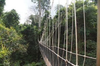 Parque Nacional de Kakum: Ghana