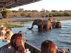 Crucero-safari PN Chobe. Botswana.: Botswana, Zimbabwe, Cataratas Victoria