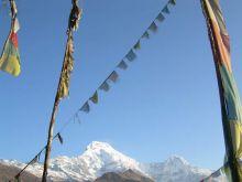 Santuario de los Annapurnas: Nepal