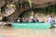Selvas de Borneo: Malasia