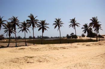 Alrededores del Lago Rosa : Senegal