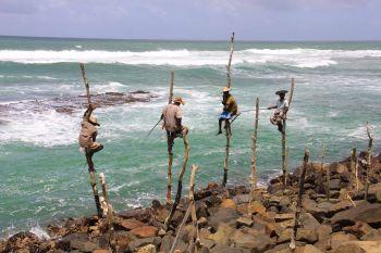 Pescadores: Sri lanka