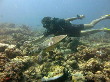 Buceando en Maldivas: Sri lanka