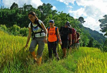 De trekking por Sri Lanka: Sri lanka