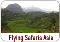 Flying Safaris Asia
