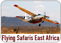 Flying Safaris East Africa