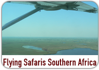 Flying Safaris Southern Africa