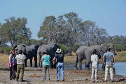 imagen Botswana, Cataratas Victoria