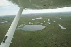 foto Southern Africa Flying Safaris