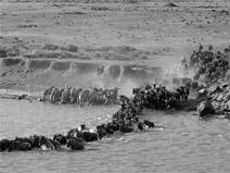 foto VIAJES Kenya, Tanzania 1