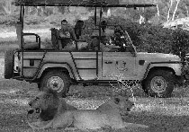 foto VIAJES Kenya, Tanzania, Uganda, Etiopía, Zanzíbar, Lamu, Isla de Mafia 4