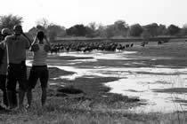 foto VIAJES Malawi, Mozambique, Zambia 1