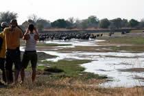 foto VIAJES Zambia, Malawi, Mozambique 1