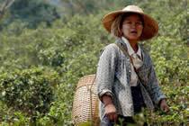 foto VIAJES Birmania (Myanmar) 2