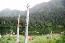 foto VIAJES Alaska 5