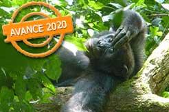 imagen Uganda